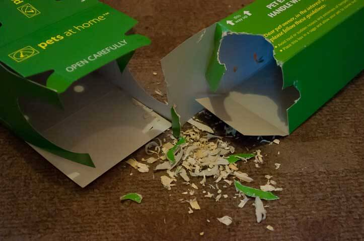 The remainders of the box Jack the Hamster came in