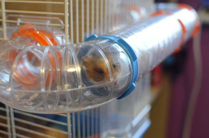 He loves his tubes