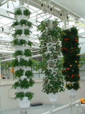 Futuristic Paul S Hydroponic And Nft Growing Blog