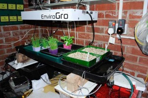 Full picture of my automatic propagator inside the garage.